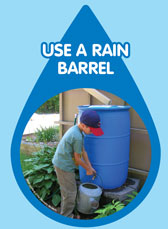 Use a rain barrel